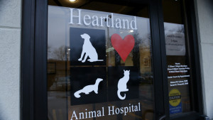 _Photography-_Heartland_Animal_Hospital_IA_(168_of_326)