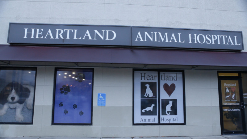 _Photography-_Heartland_Animal_Hospital_IA_(167_of_326)